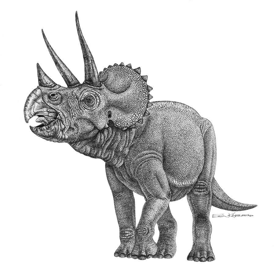 triceratop triseratops vikipediya triceratop