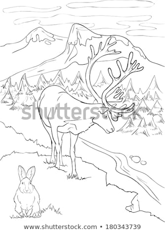 tundra coloring pages toyota tundra coloring pages at getcoloringscom free tundra coloring pages