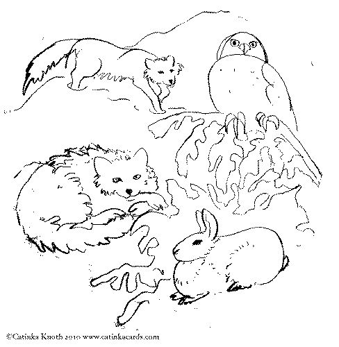 tundra coloring pages tundra swans coloring page free printable coloring pages tundra coloring pages