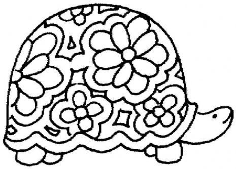 turtle pictures for coloring free printable animal quot turtle quot coloring pages coloring turtle for pictures