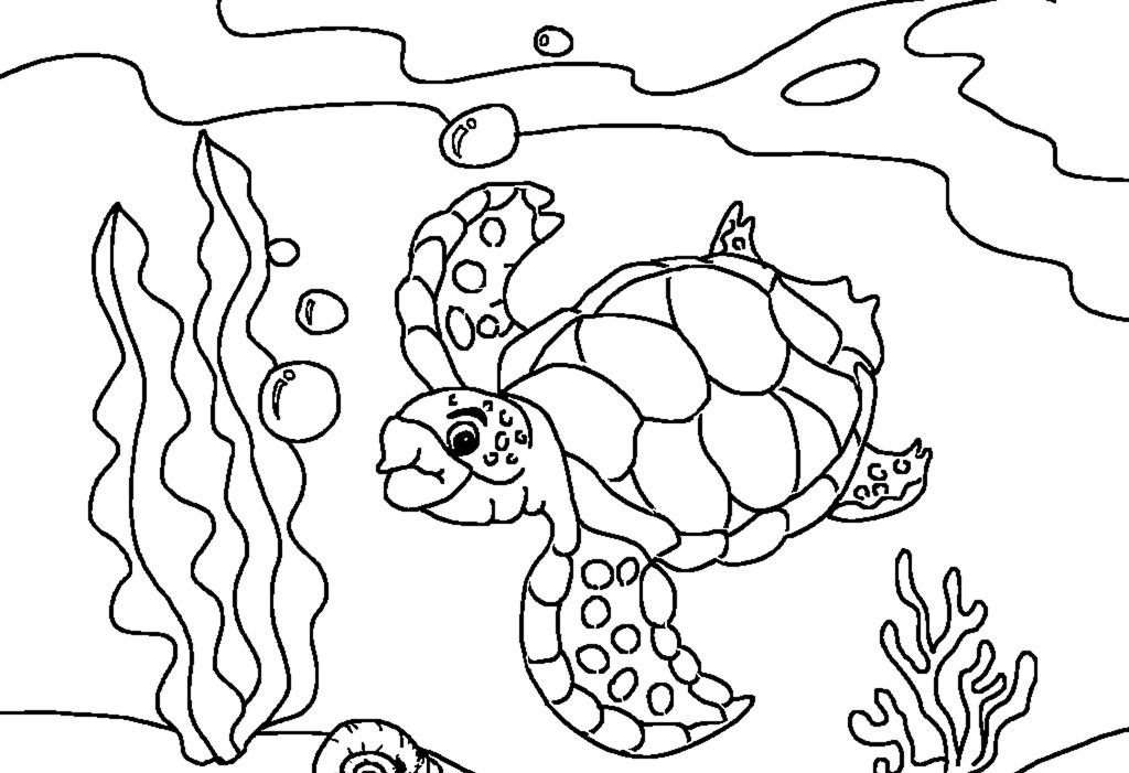 turtle pictures for coloring how to draw a sea turtle step 5 art with turtles in 2019 for pictures coloring turtle