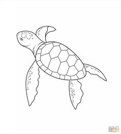 turtle pictures for coloring neptune 911 for kids print and color the turtle seahorse turtle pictures for coloring
