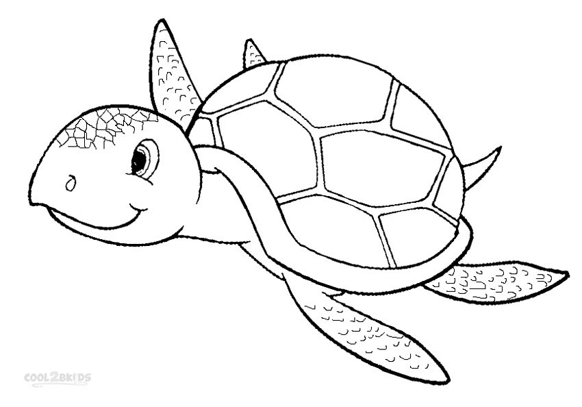 turtle pictures for coloring printable sea turtle coloring pages for kids cool2bkids for turtle coloring pictures