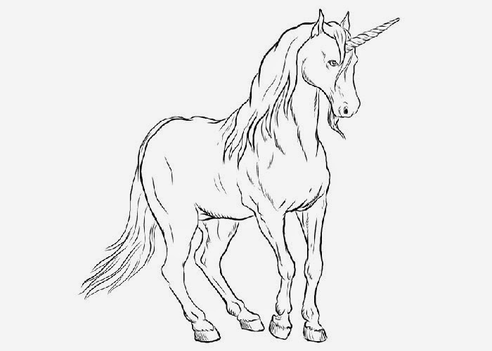 unicorn coloring page free baby bingo template printable blank auto electrical coloring unicorn page