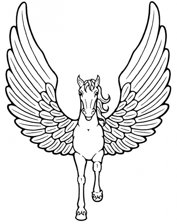 unicorn coloring page unicorn drawing pages at getdrawings free download page unicorn coloring