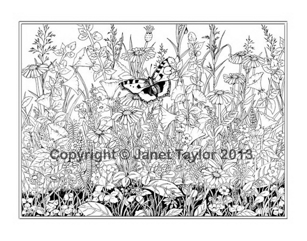 very detailed coloring pages vampire coloring pages online looking for some coloring coloring detailed very pages