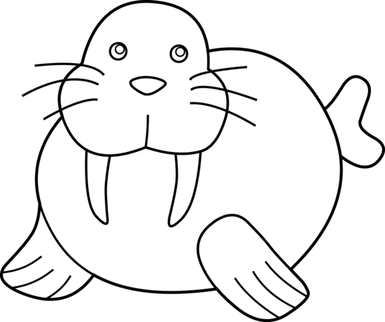 walrus pictures to print cartoon walrus on the ice floe coloring page free walrus pictures to print