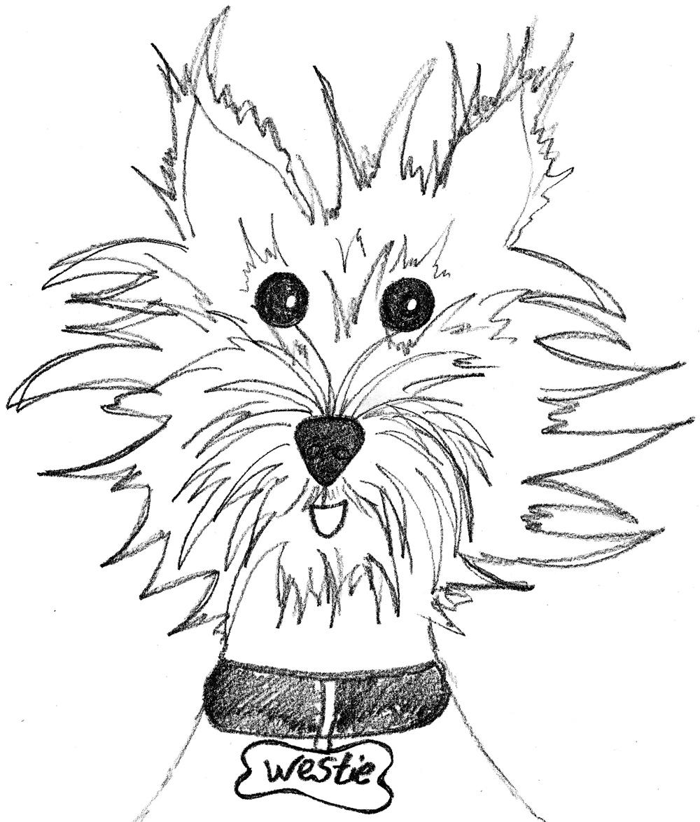 westie coloring pages résultat de recherche d39images pour quotdessin lion simple pages westie coloring