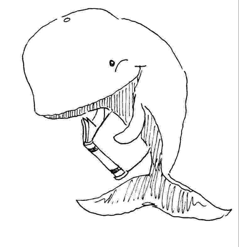 whale coloring sheet picture of blue whale coloring page netart whale coloring sheet