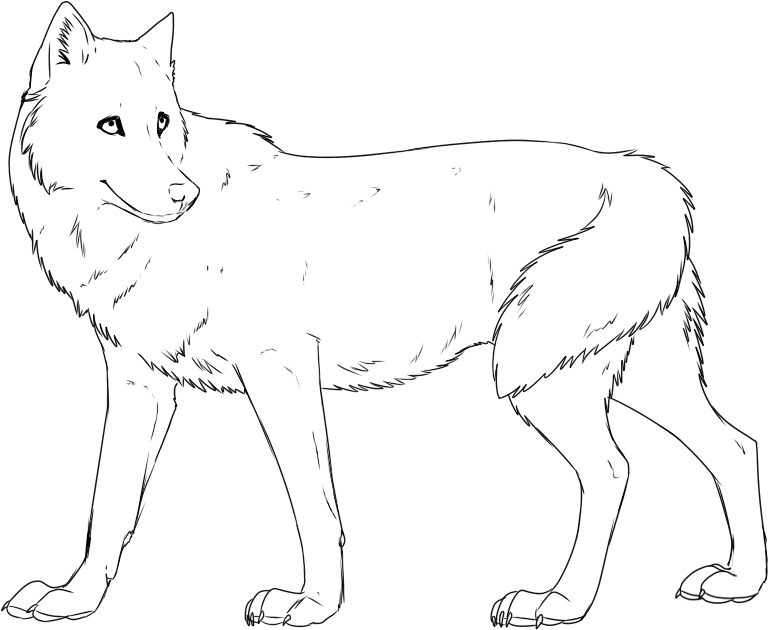 wolf coloring page free printable wolf coloring pages for kids coloring page wolf