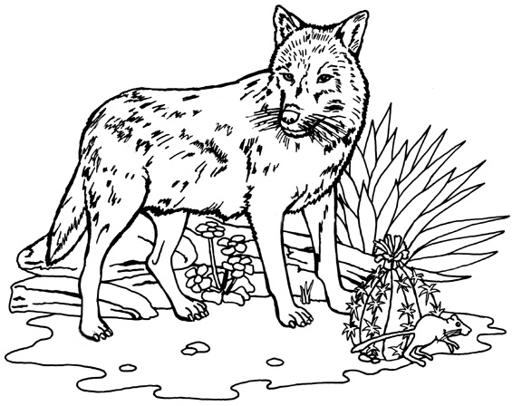 wolf coloring page wild animal quot wolf quot printable coloring pages page coloring wolf