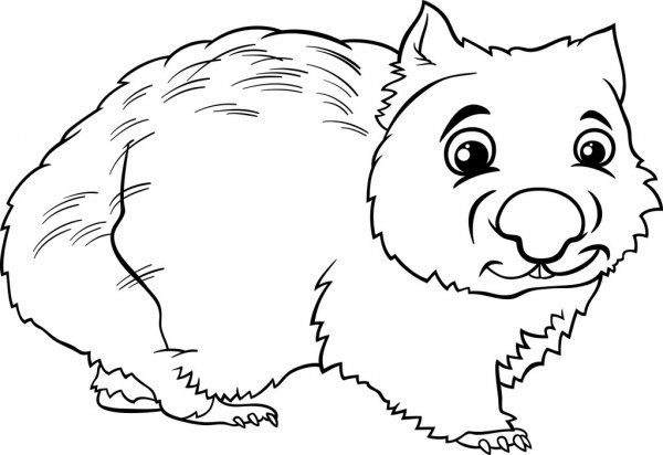 wombat colouring baby wombat coloring page super coloring wombat colouring