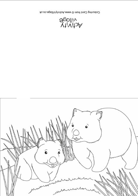 wombat colouring wombat animal cartoon coloring book stock vector wombat colouring