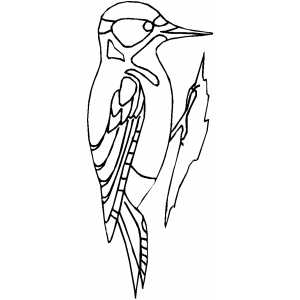 woodpecker coloring page woodpecker hairy coloring page page woodpecker coloring