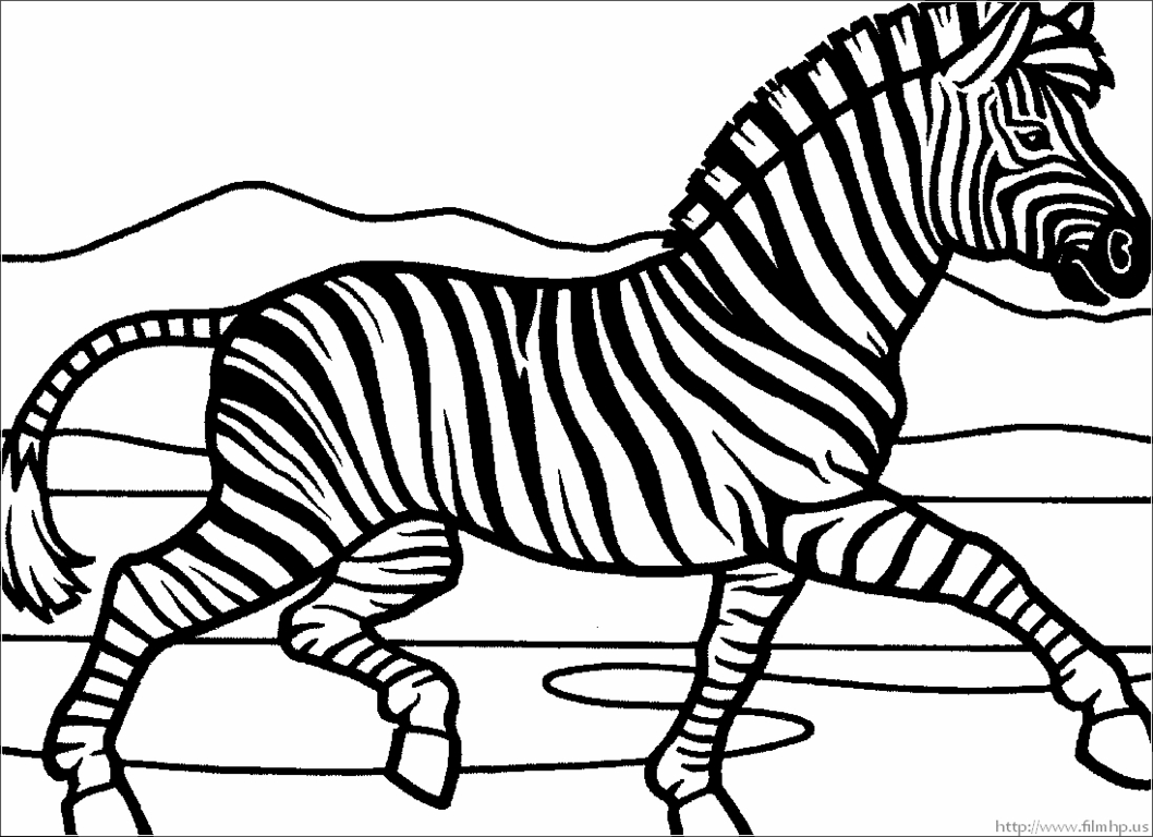 zebra coloring pages free printable zebra coloring pages free printable kids coloring pages coloring pages free printable zebra
