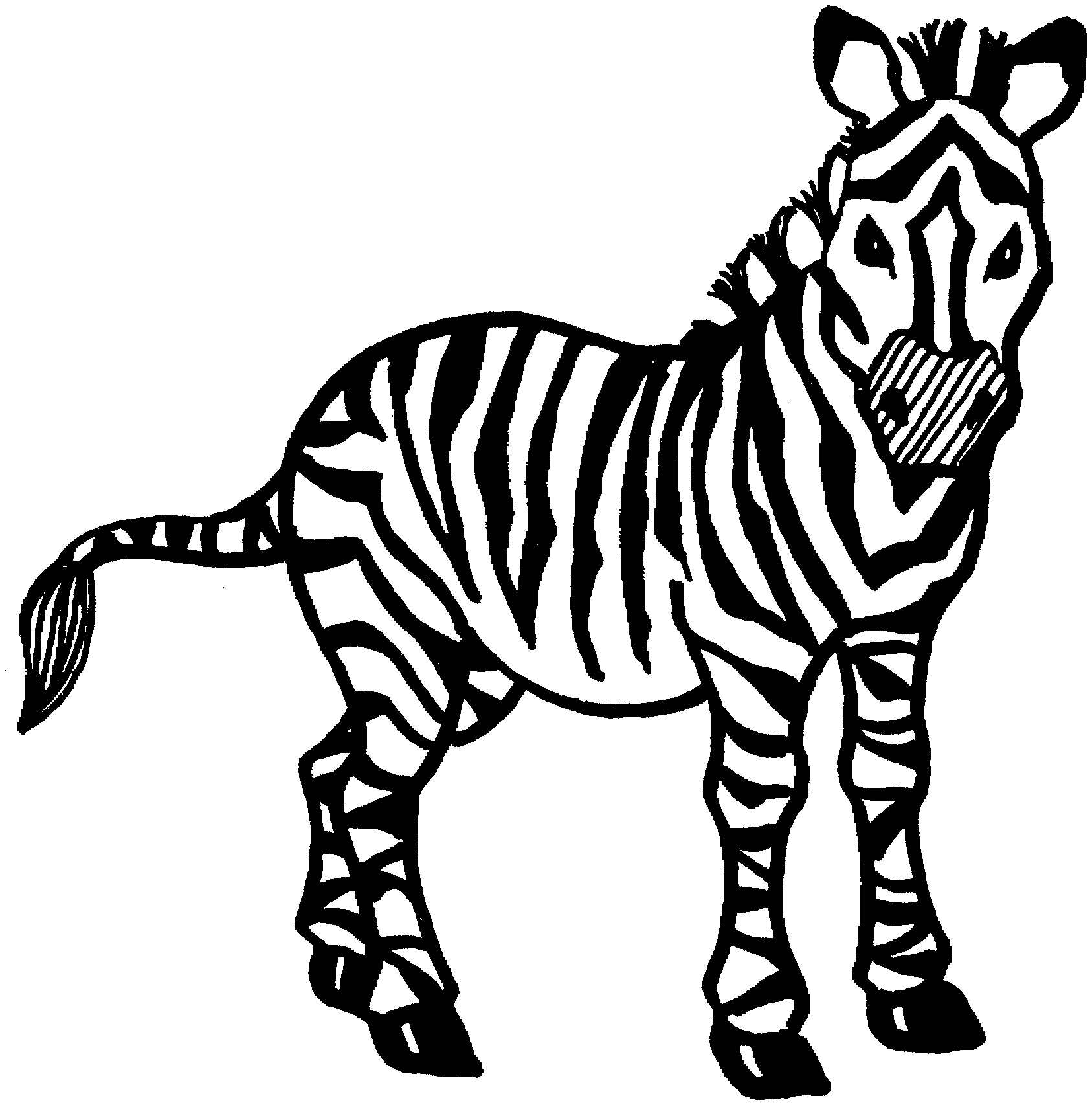 zebra coloring pages free printable zebra coloring pages free printable kids coloring pages coloring pages free zebra printable