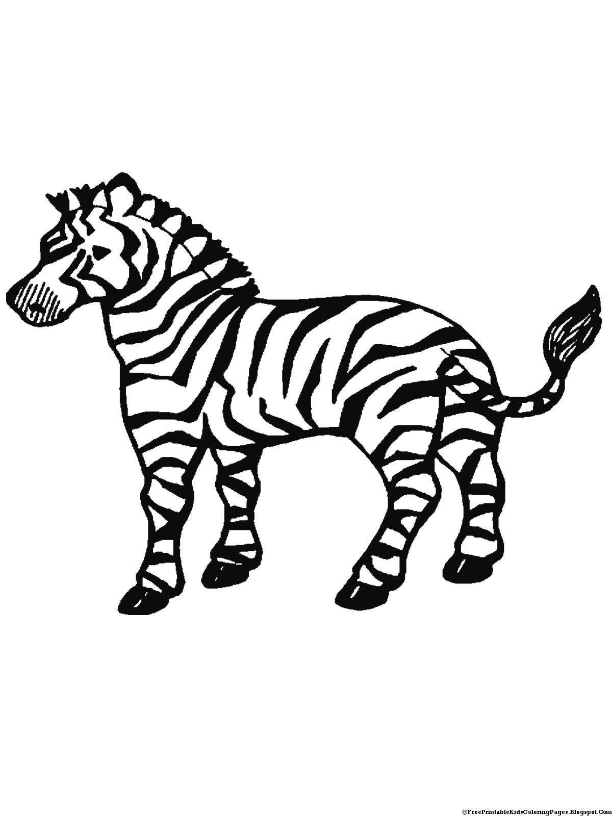 zebra coloring pages free printable zebra coloring pages free printable kids coloring pages coloring printable free zebra pages