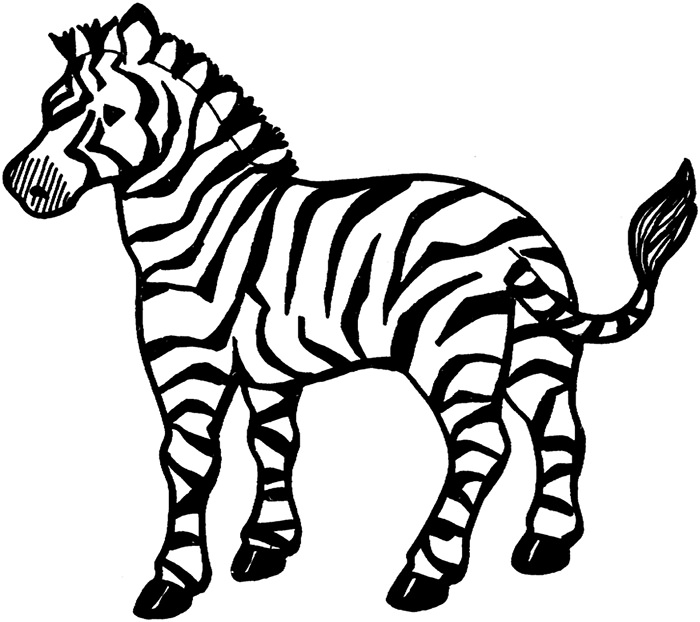 zebra pictures to colour zebra coloring pages to download and print for free to pictures colour zebra