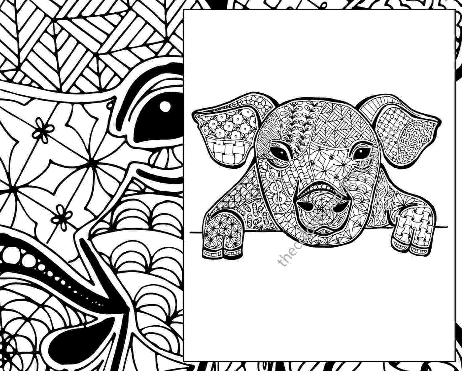 zentangle colouring pages animals kearney woman39s zentangle coloring book stems from her colouring animals pages zentangle