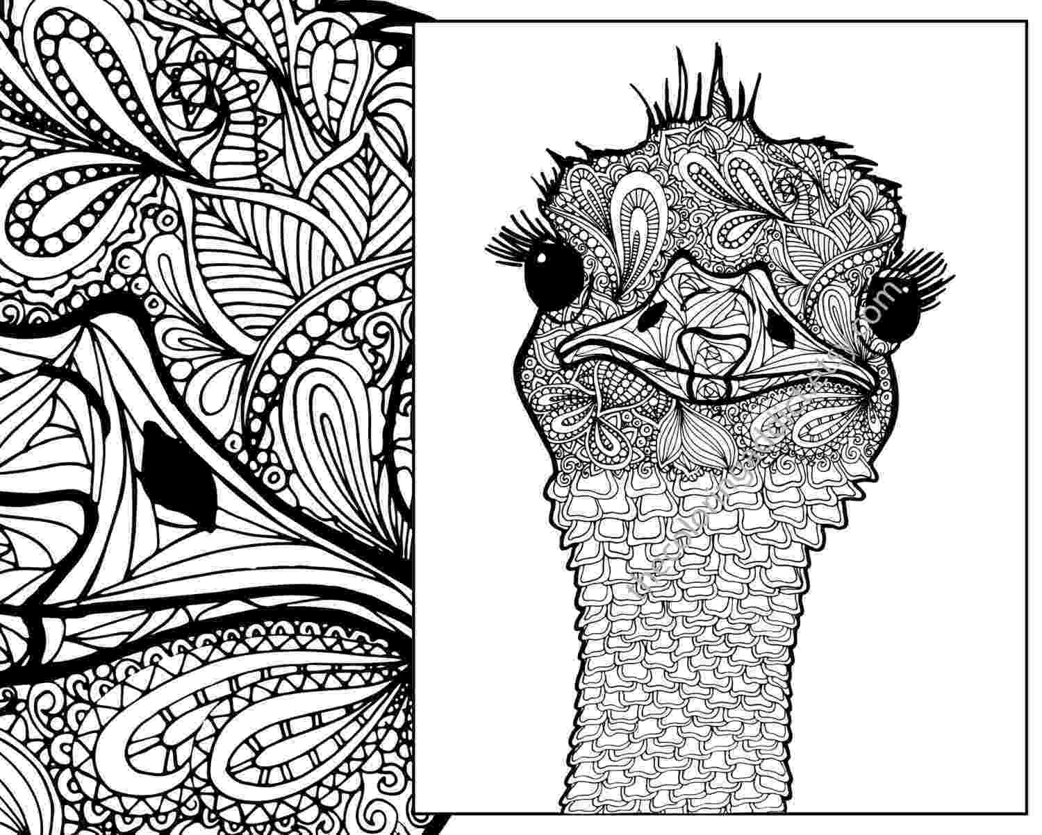 zentangle colouring pages animals ostrich coloring sheet animal coloring pdf zentangle adult colouring animals pages zentangle