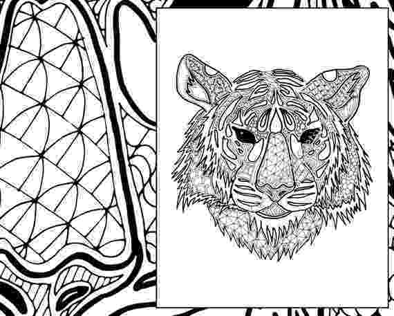 zentangle colouring pages animals owl zentangle coloring page from zentangle category animals colouring pages zentangle