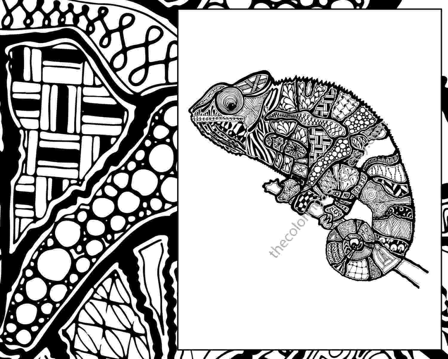 zentangle colouring pages animals zentangle lizard coloring page animal zentangle colouring pages animals zentangle colouring