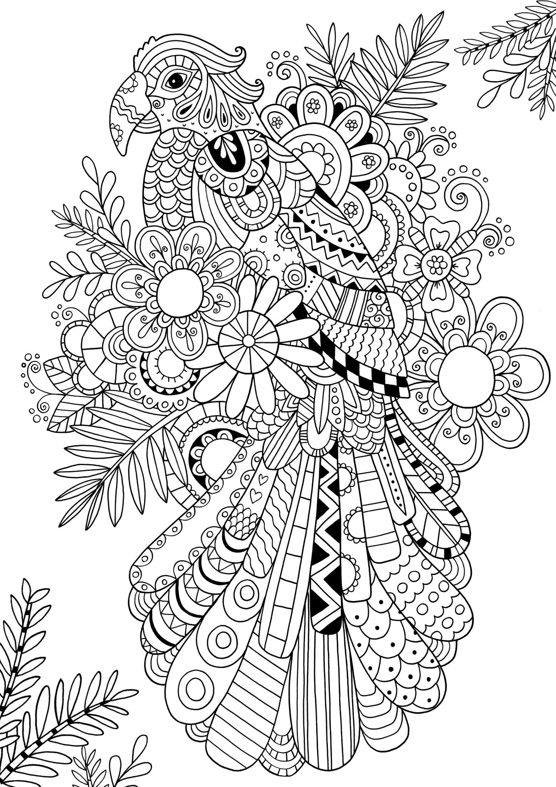 zentangle patterns coloring pages how to draw zentangle patterns hobbycraft blog zentangle patterns coloring pages