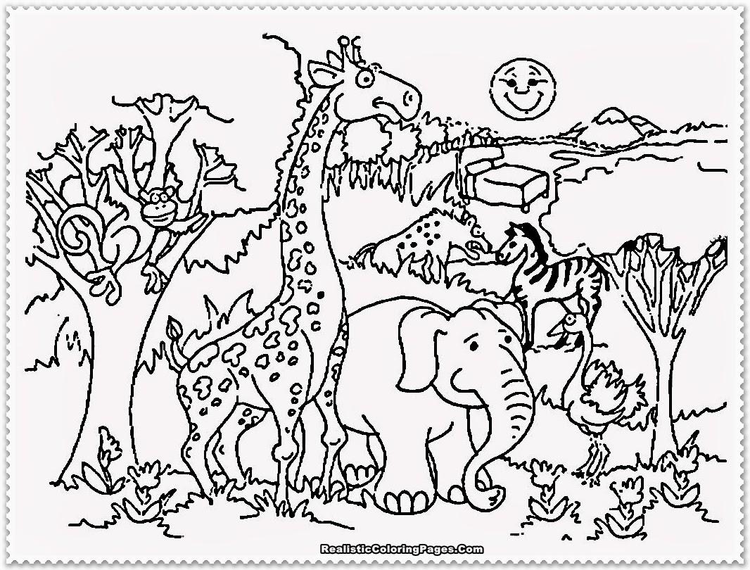 zoo animal coloring book free printable zoo coloring pages for kids coloring book animal zoo
