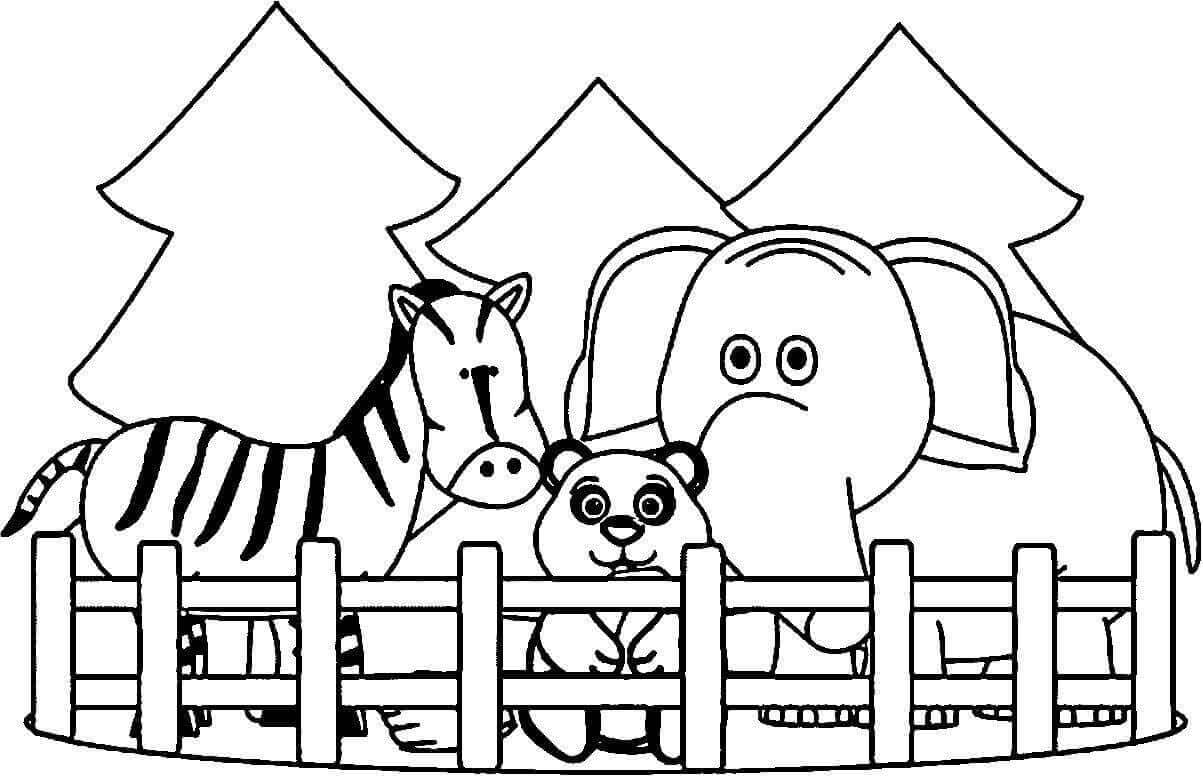 zoo coloring pages free printable zoo coloring pages for kids coloring zoo pages