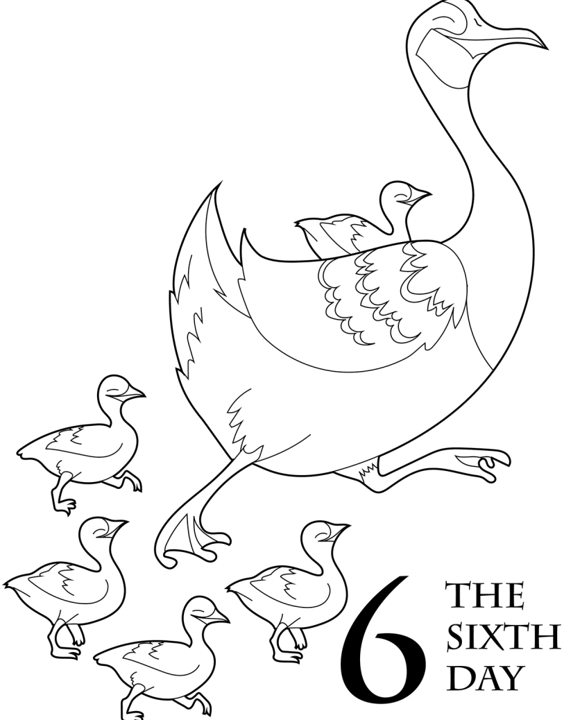 12 days of christmas coloring pages the 12 days of christmas coloring book scholastic parents pages 12 days of christmas coloring