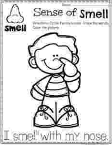 5 senses coloring pages for preschoolers five senses coloring pages by kristen davis teachers pay 5 for pages coloring preschoolers senses