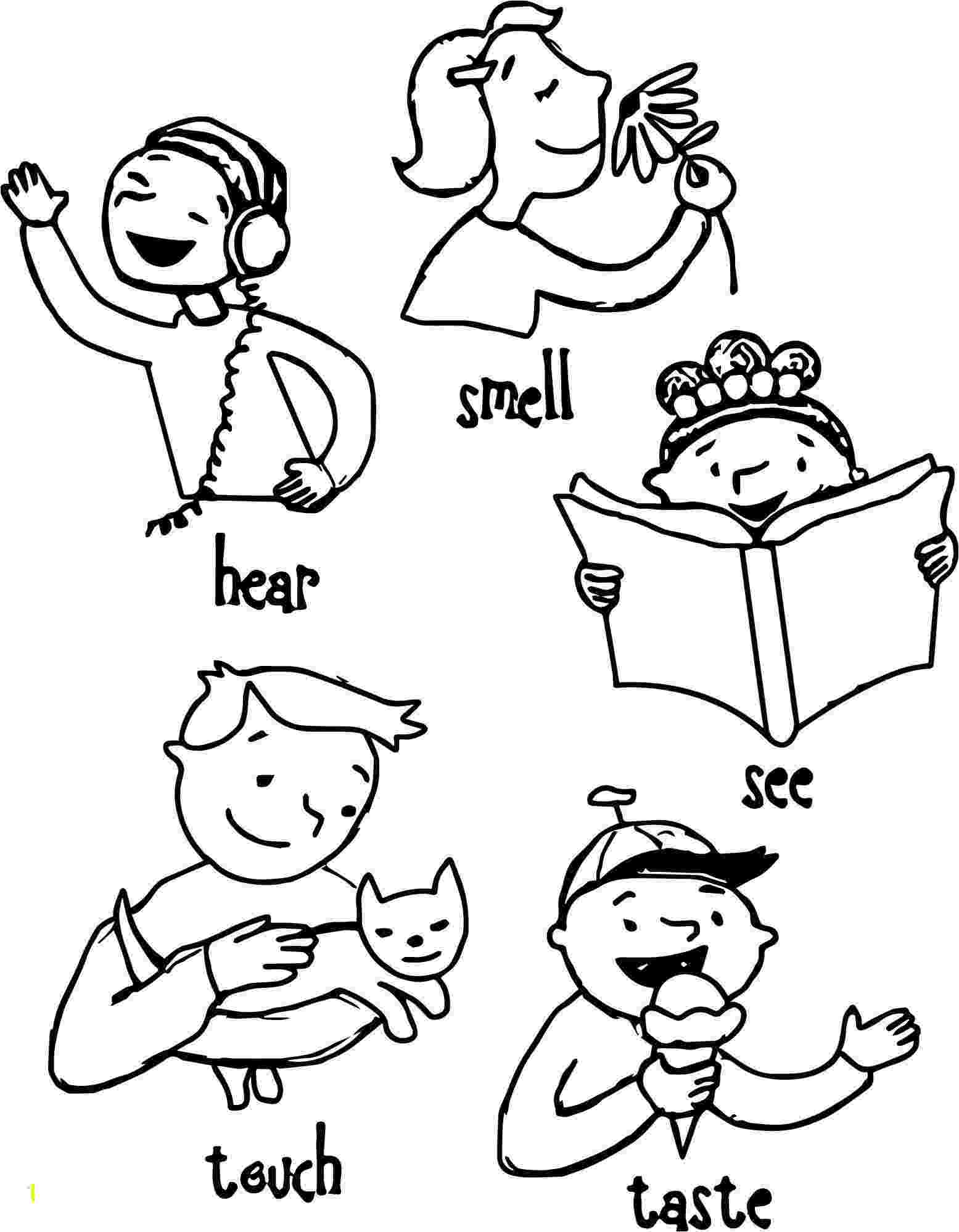 5 senses coloring pages for preschoolers free my five senses coloring pages download free clip art 5 coloring for preschoolers senses pages