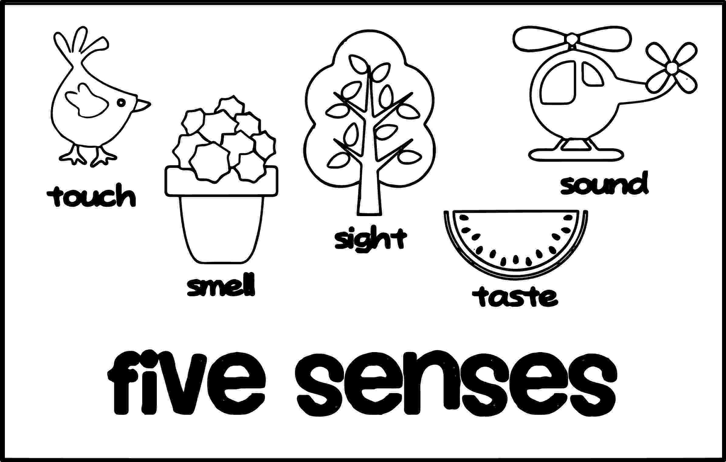 5 senses coloring pages for preschoolers live laugh i love kindergarten 5 senses card match pages coloring senses preschoolers for 5