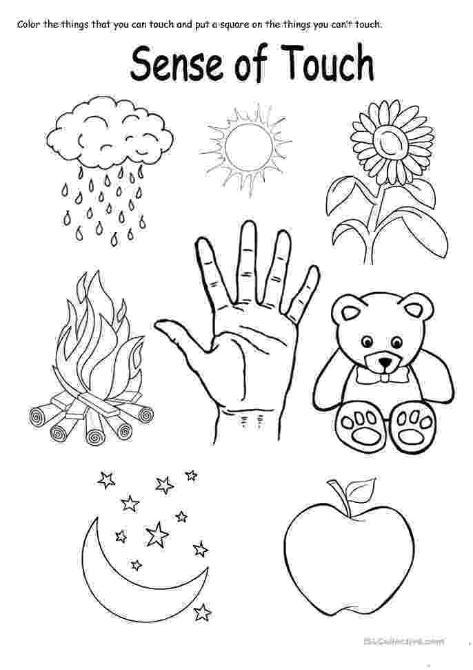 5 senses coloring pages for preschoolers my five senses mini book ccss aligned science my for senses coloring pages 5 preschoolers