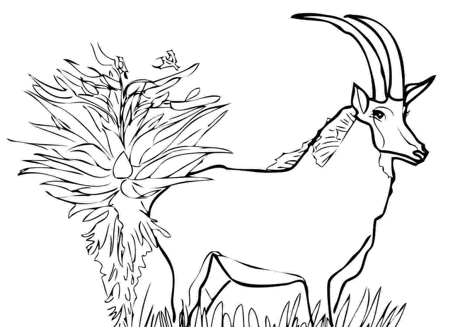 a coloring sheet a bug39s life coloring pages 4 disneyclipscom sheet coloring a