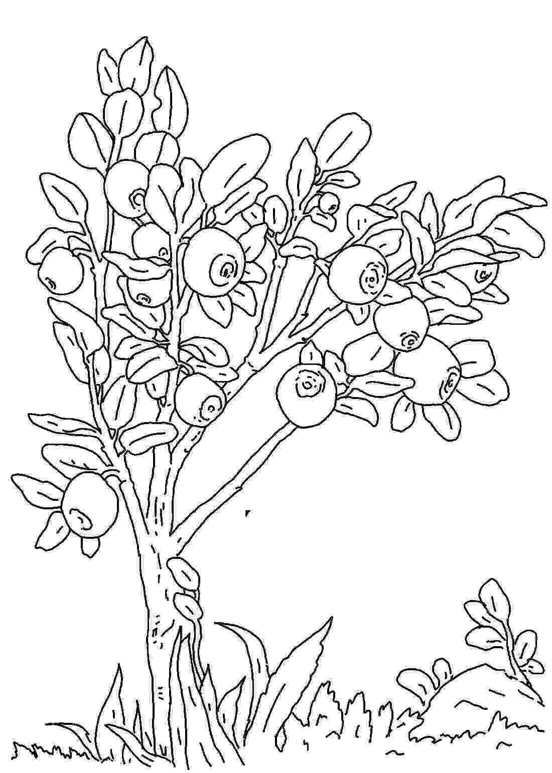 a coloring sheet ponies from ponyville coloring pages free printable a sheet coloring