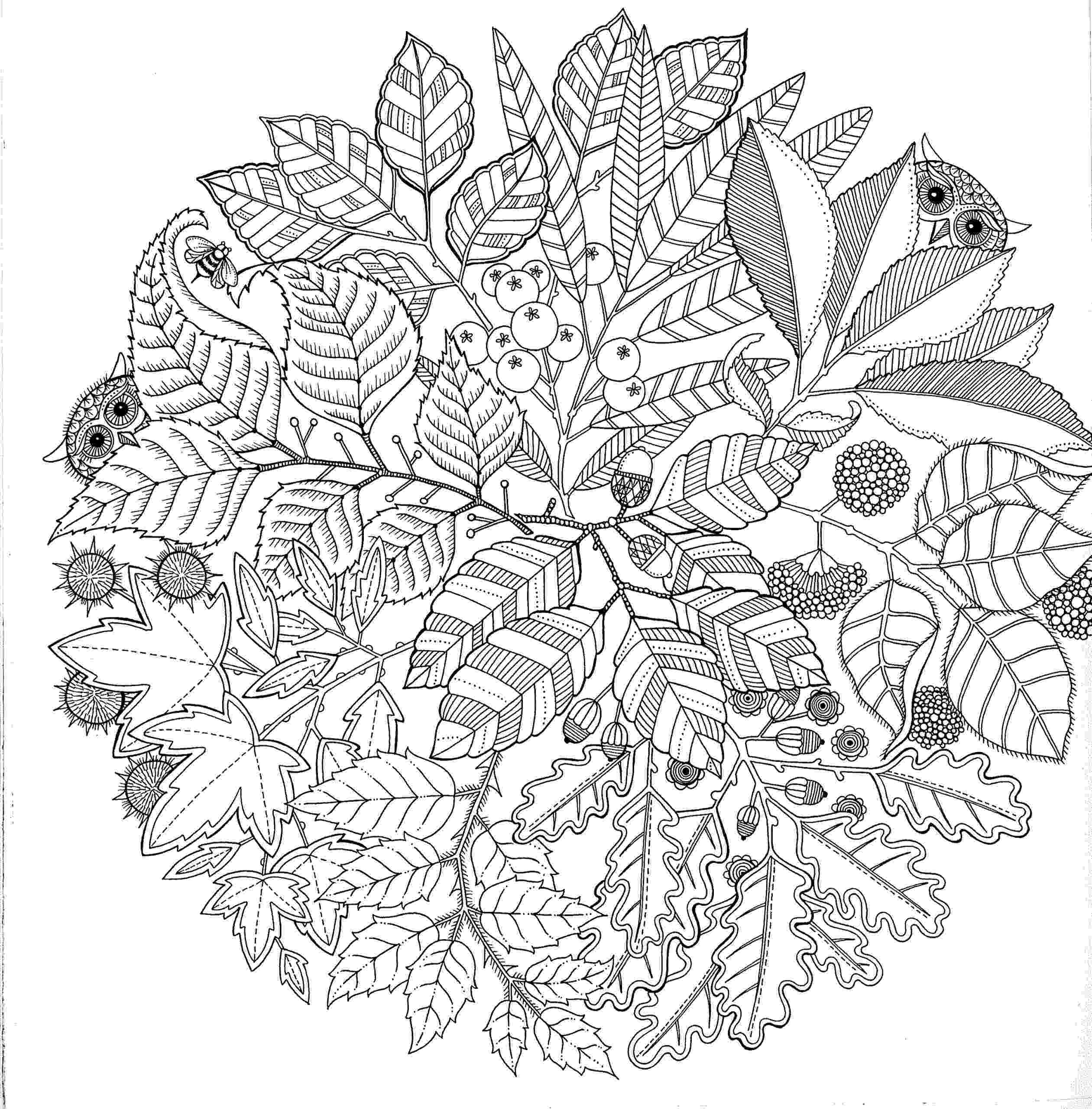 adult coloring pages abstract free printable abstract coloring pages for adults pages coloring adult abstract 1 1