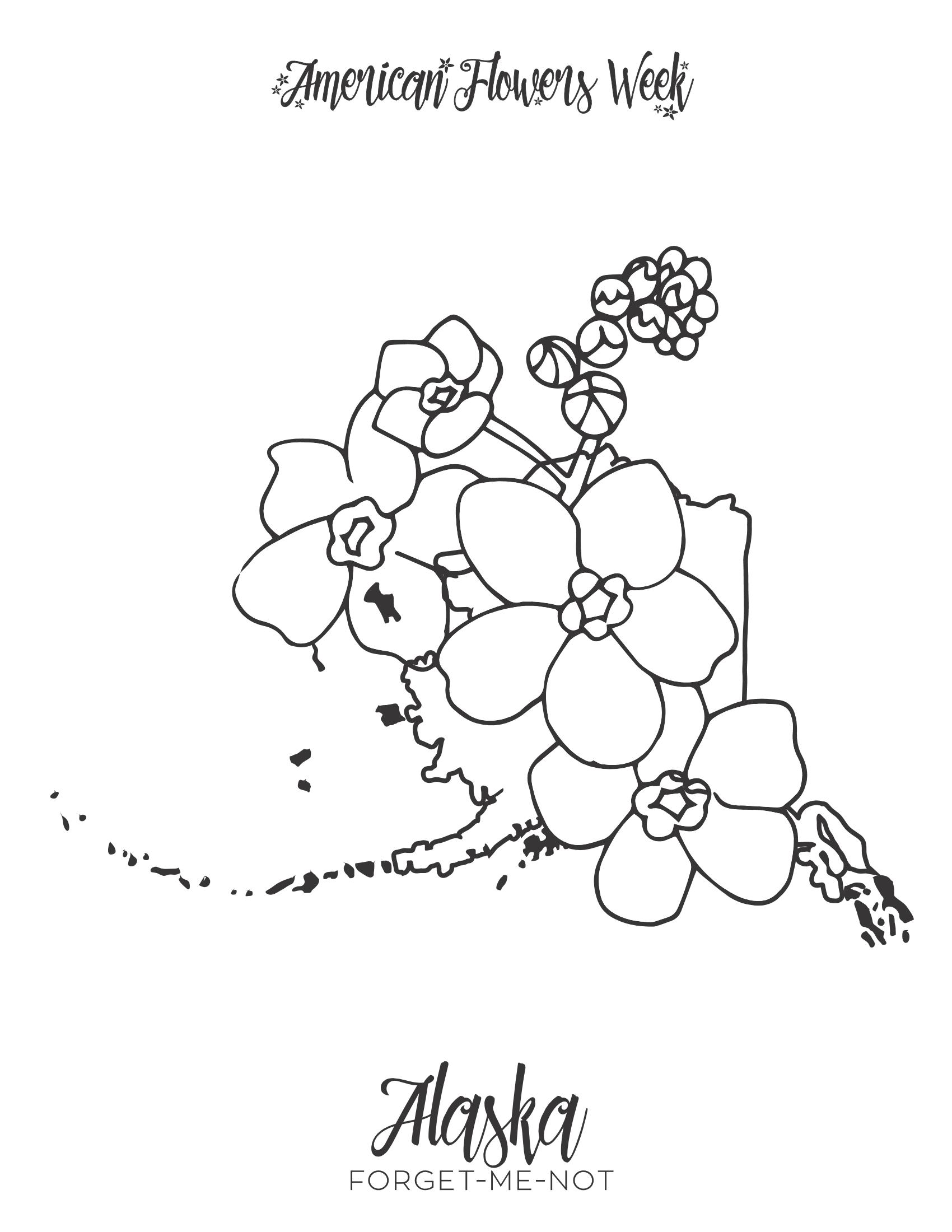 alabama state flower alabama flower state alabama flower state