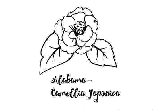 alabama state flower state flower alabama camellia japonica svg cut file by state alabama flower