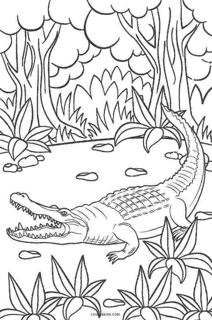 aligator coloring pages free printable alligator coloring pages for kids cool2bkids pages aligator coloring