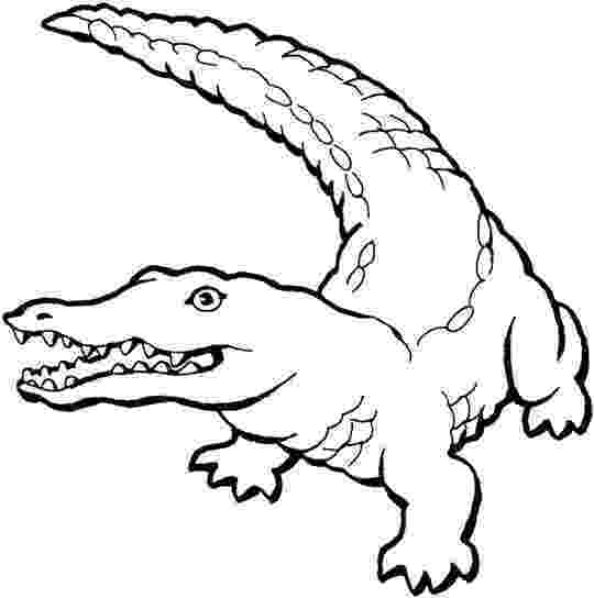 alligator color alligators and crocodiles coloring pages download and color alligator