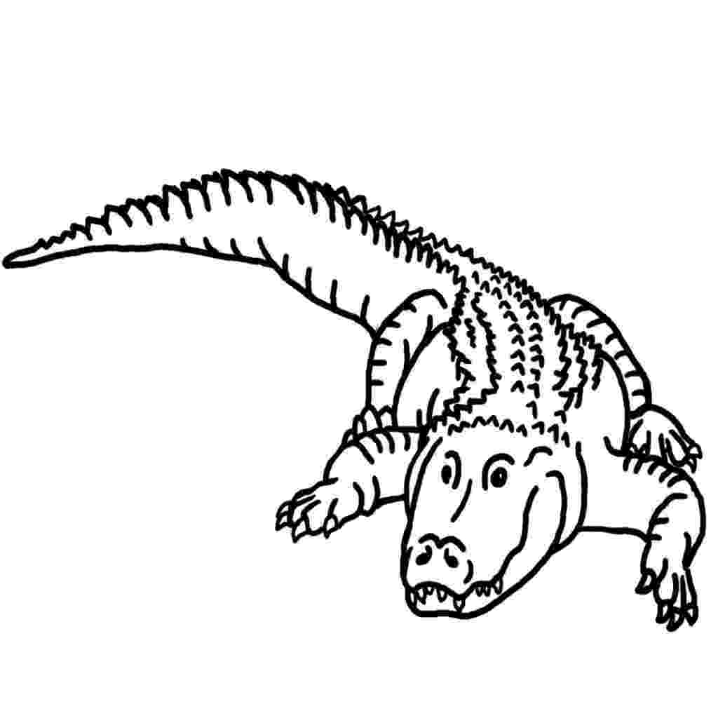 alligator color free printable alligator coloring pages for kids alligator color 1 2