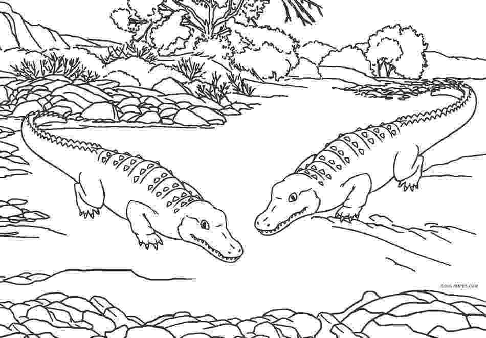 alligator color free printable alligator coloring pages for kids cool2bkids alligator color