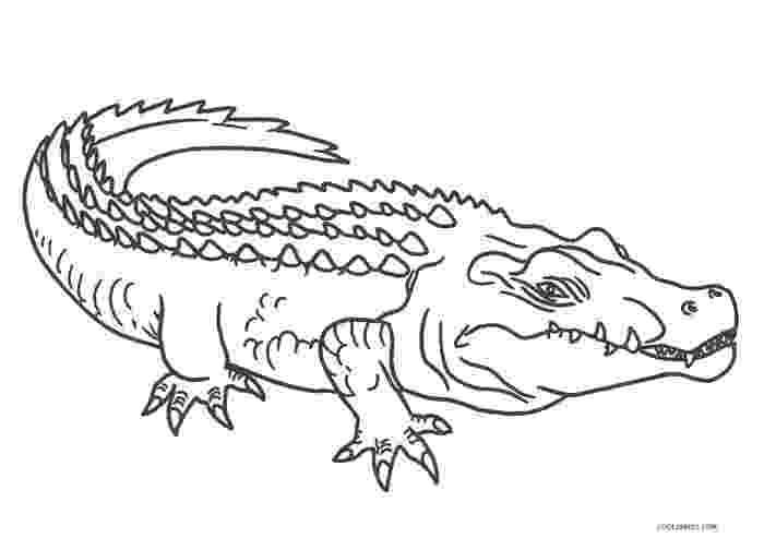 alligator color free printable alligator coloring pages for kids cool2bkids alligator color 1 2