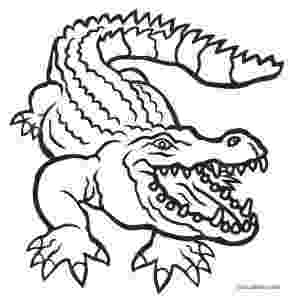 alligator coloring pages free coloring pages crocodiles coloring alligator pages