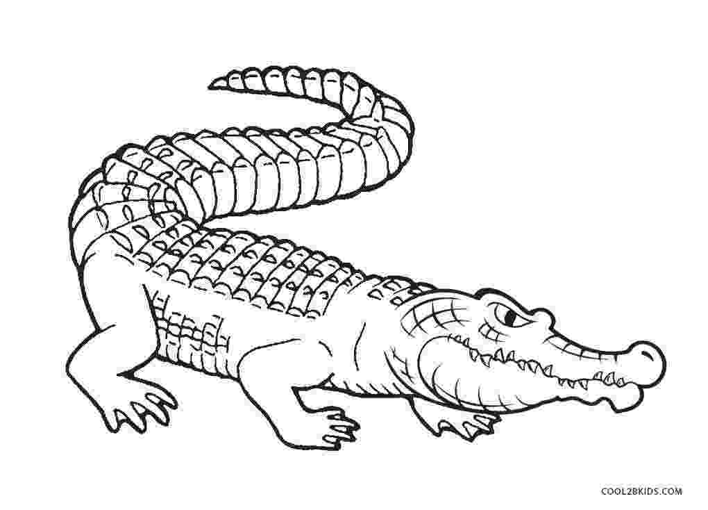 alligator coloring pages free printable alligator coloring pages for kids alligator pages coloring