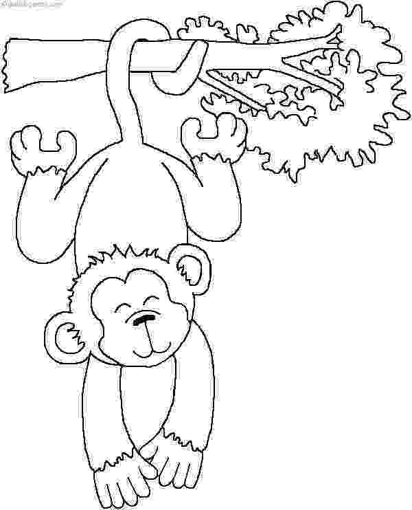 animal coloring suggestions 29 best mural ideas images coloring pages animal suggestions animal coloring
