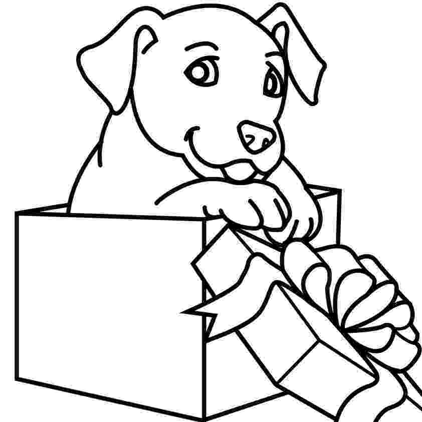 animal coloring suggestions the 25 best animal coloring pages ideas on pinterest coloring animal suggestions