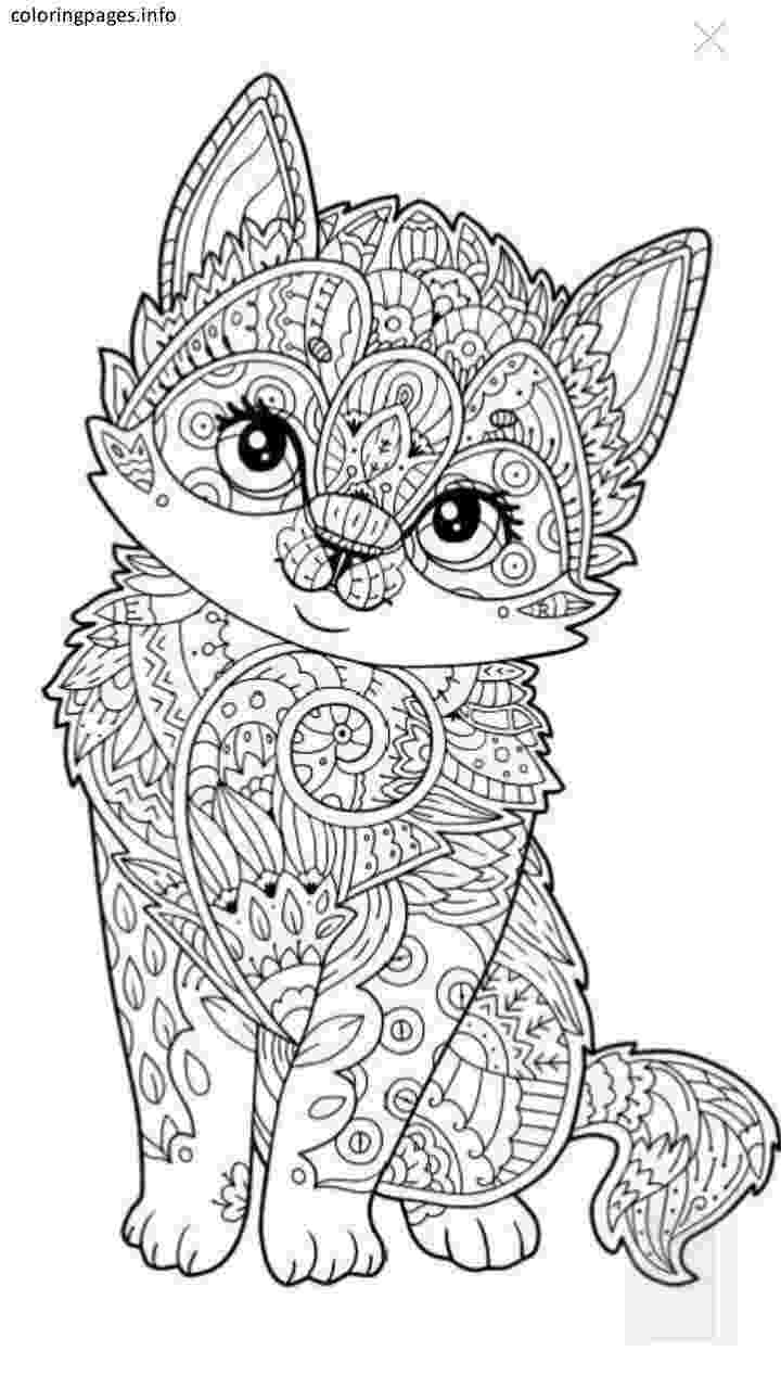 animal colouring pages free cat animal mandala coloring pages mandala coloring pages animal free pages colouring