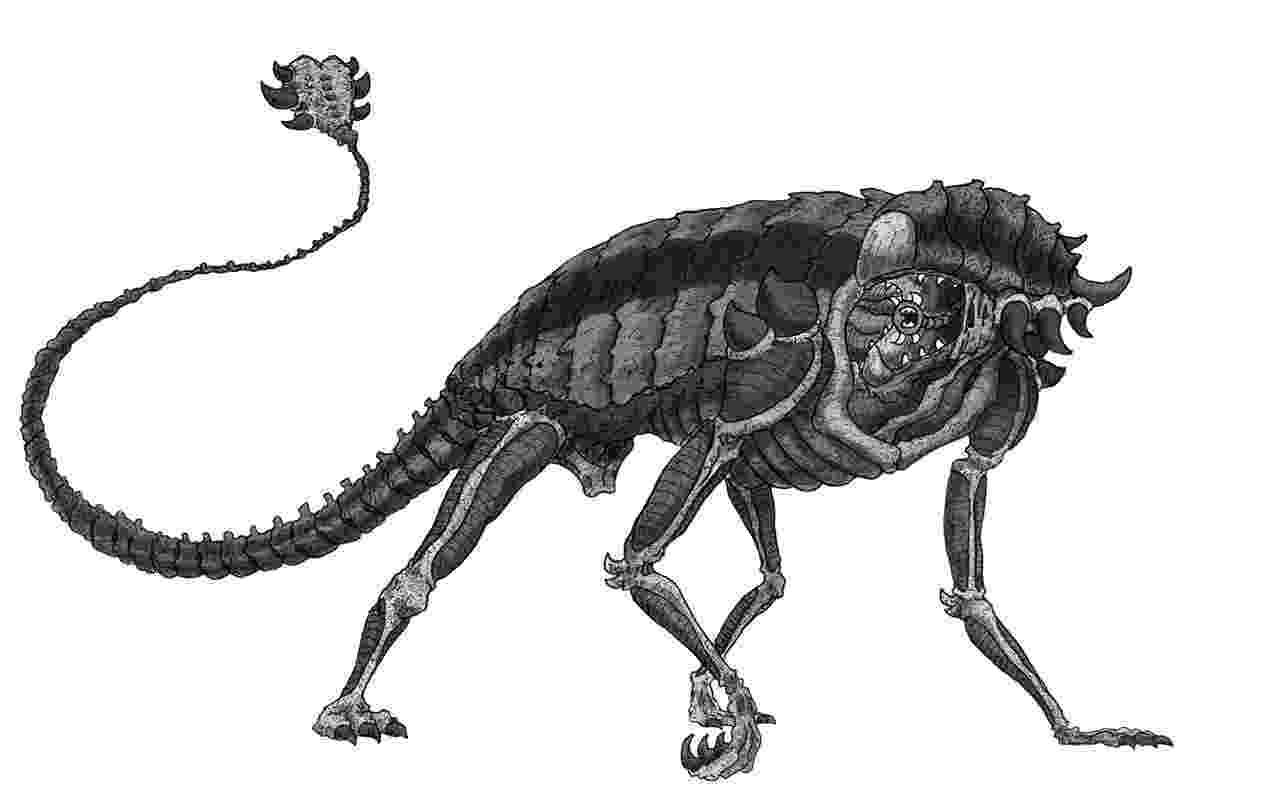 ankylosaurus dinosaurs t rex dinosaur coloring page trex coloring ankylosaurus